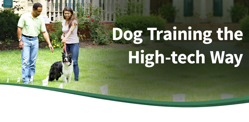 Dog Training the High-Tech Way
